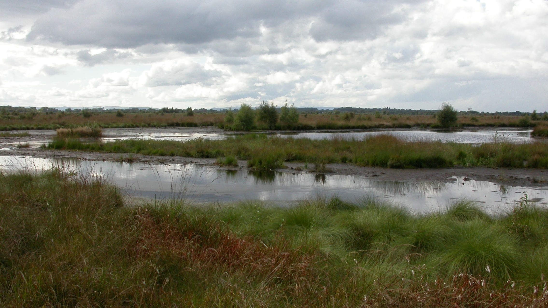 Whixall Moss